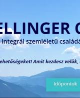 athalie consulting weboldal készítés hellingercsoport
